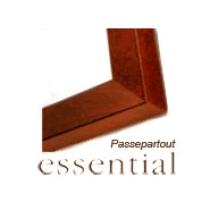 Nielsen Essential mit Mehrfachausschnitt-Passepartout